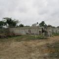 camera jan 2011 004_opt