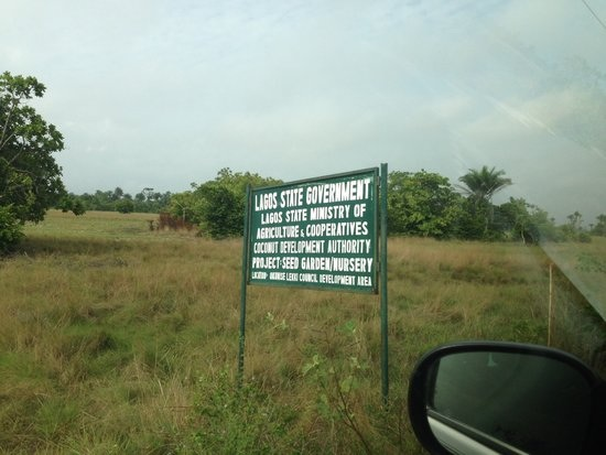 The land these Real Estate Developers wanted to sell to our client belongs to the Lagos State Ministry of Agriculture and Cooperatives Coconut Development Authority. Can You Imagine?